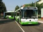 Солнечногорск получит 17 новых автобусов
